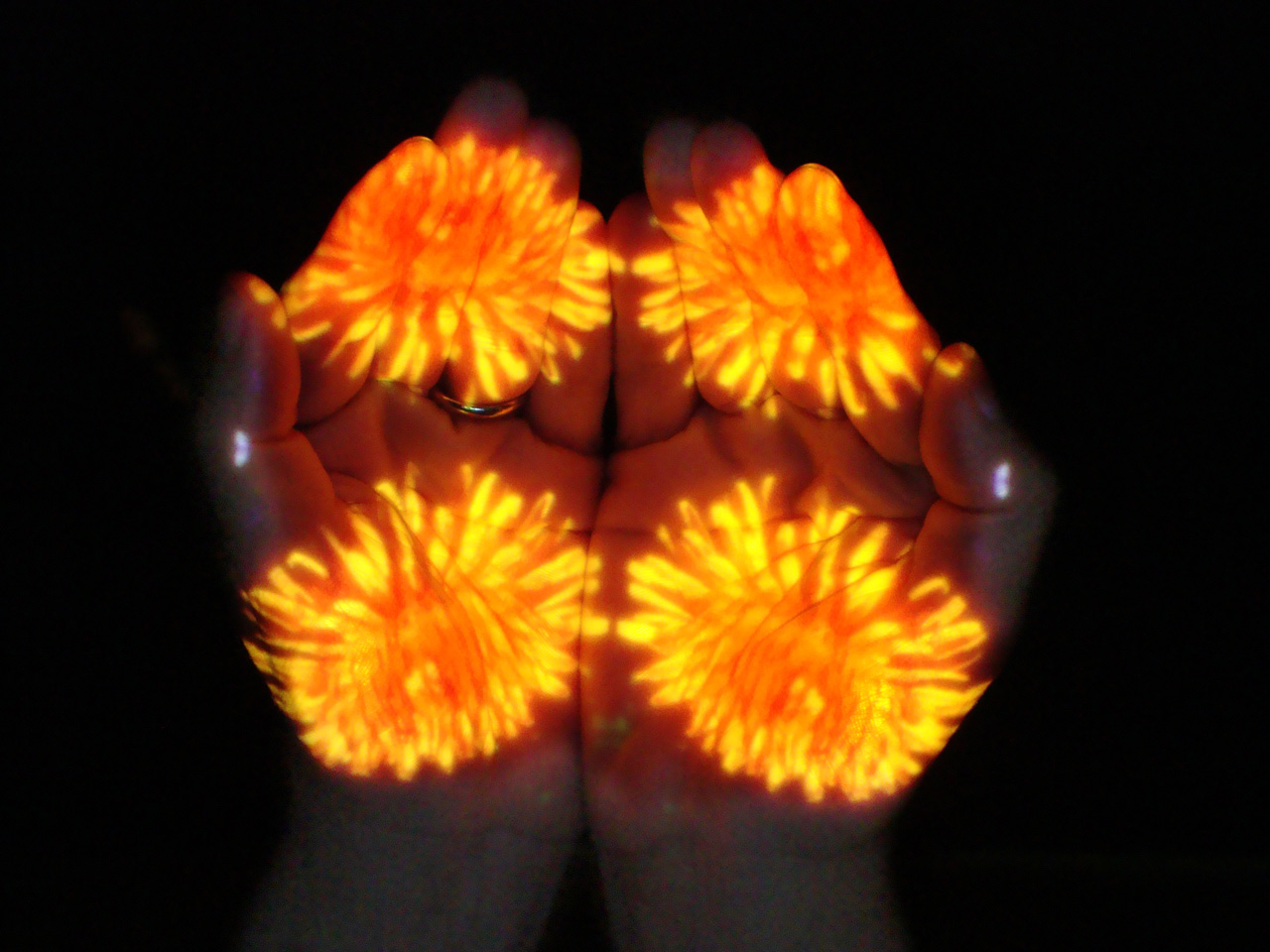 Mudra Flower Shower: Dandelion (alleviating muscle tension from over-striving), Suran Song 2014